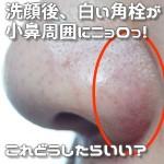 洗顔後、白い角栓が小鼻周囲にニョロっ!これどうしたらいい?