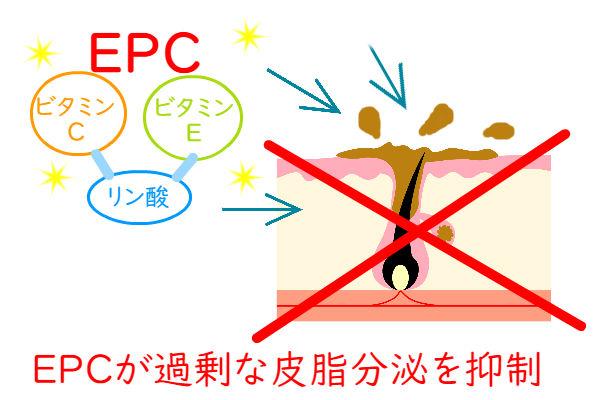EPCが過剰な皮脂分泌を減らす