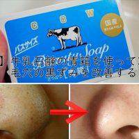 【詳細画像】牛乳石鹸の青箱を使って30日間で毛穴の黒ずみを改善する方法!